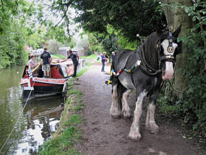 Horse and the boat Kennet Valley